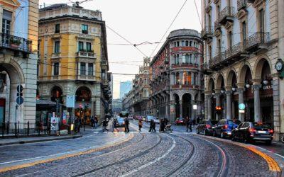 Servizio derattizzazione Torino